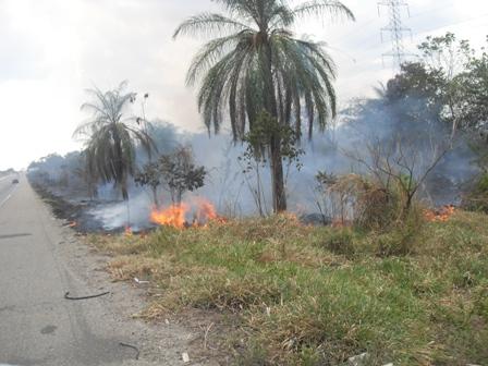 incendios forestales cerca de la subestaciones de corpoelec