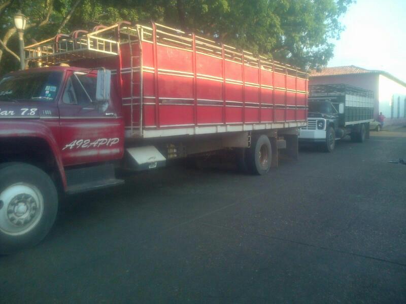 Los dos camiones donde eran transportadas las 22 reses que habían sido robadas