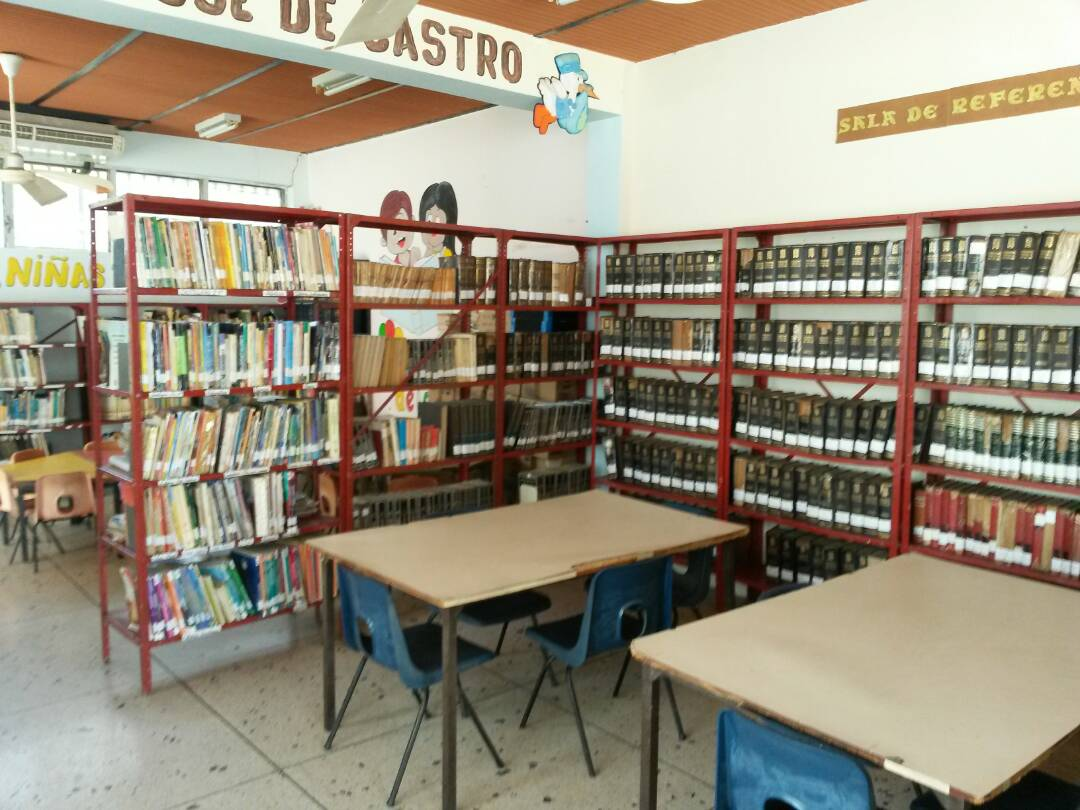 Un total de 309 libros forman parte de la colección que los lectores pueden encontrar en la Biblioteca Pública Pedro Escobar Ramírez