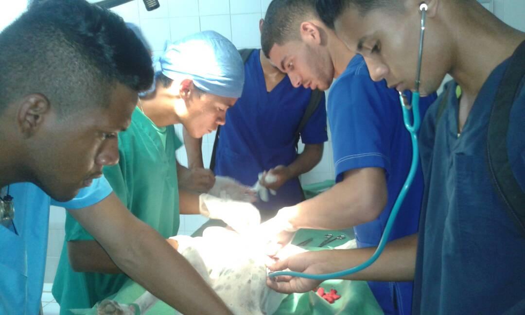 Estudiantes y médicos en plena operación.