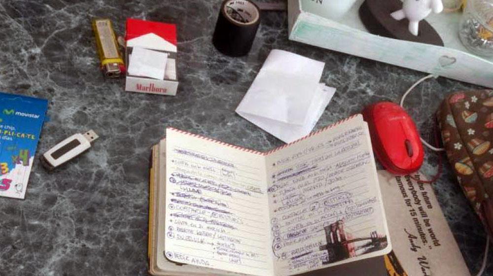 Una agenda, la prueba que demostraría que la joven que castró a su amante había planeado su venganza