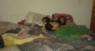 A balazos atacan a familia mientras dormían