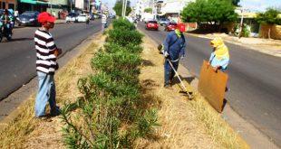 Cuadrillas realizan labores de limpieza en la avenida Rómulo Gallegos