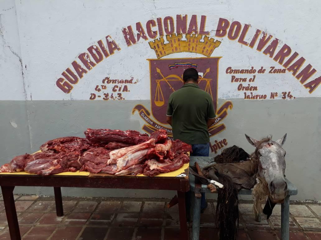 Lo pillaron vendiendo carne de caballo