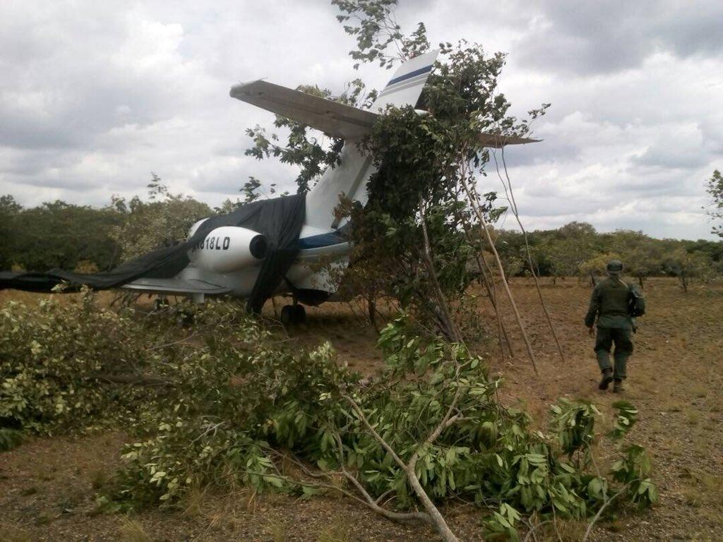 Encontraron la aeronave tapada con ramas.