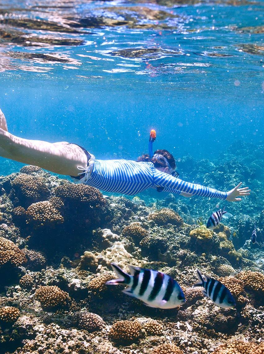 ¡vive y explora en los océanos el Archipiélago Seychelles