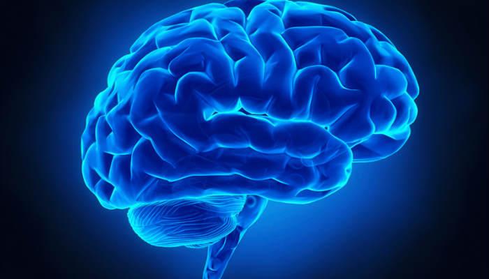 Reduce el flujo de sangre que llega al cerebro