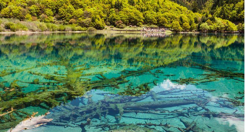 Lago La cinco flores, impresionan al mundo