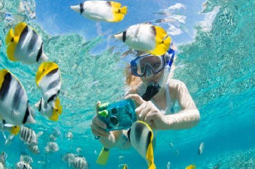 Buceo o Snorkel