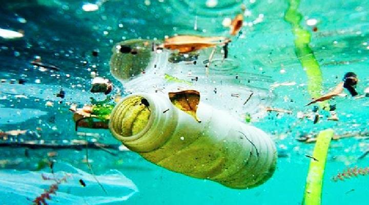 todos debemos cuidar el medio ambiente