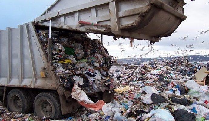 el medio ambiente, ¿como debemos cuidarlo?