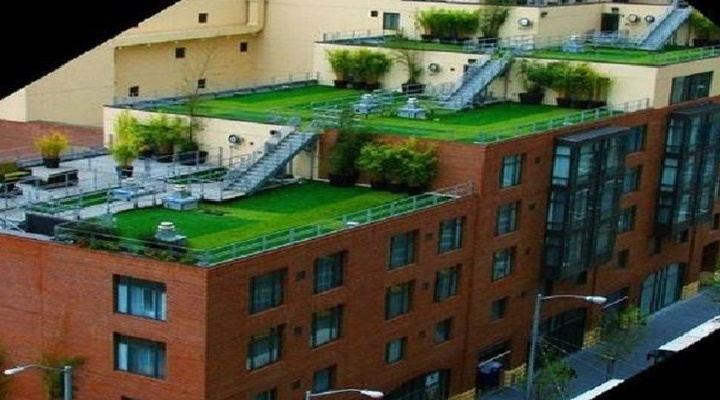 ¿Como nos beneficia un edificio con techos verdes?