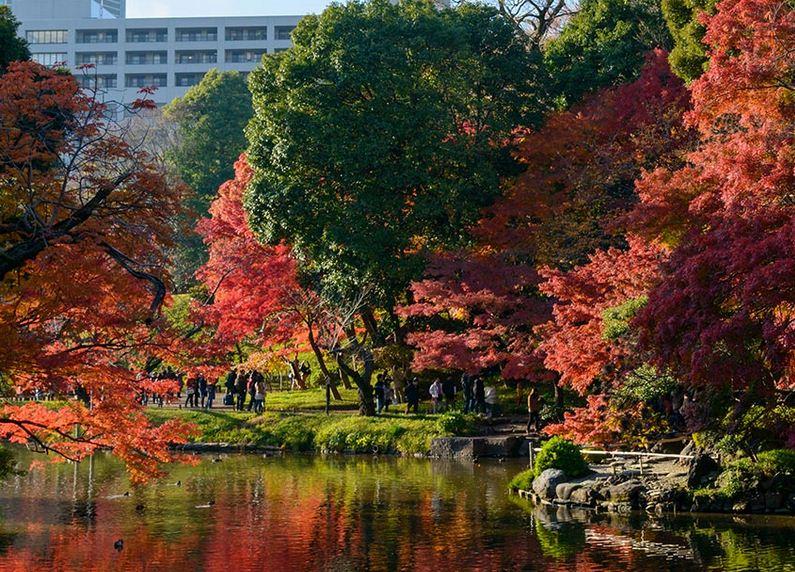 Parque Koishikawa Korakuen, Tokio