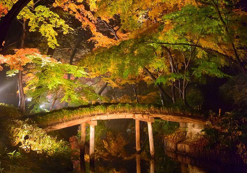 Parque Rikugien, Tokio