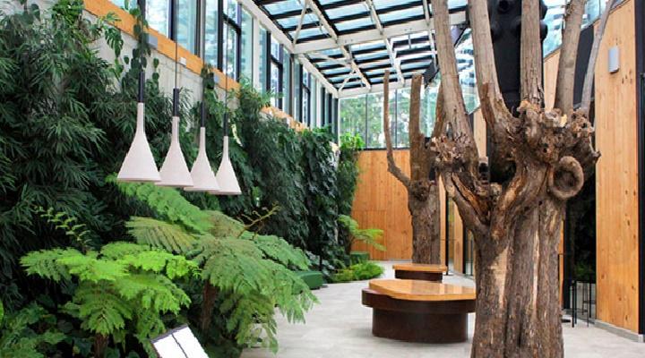 ¿Restaurante totalmente sostenible?, hablamos del Azurmendi