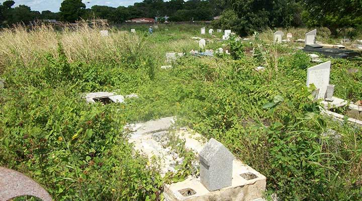 La maleza invade parcelas y tumbas en el Cementerio Municipal.jpg  (2)