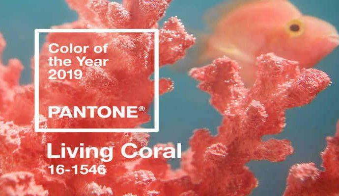 Para el próximo año el coral vivo sería el color del año