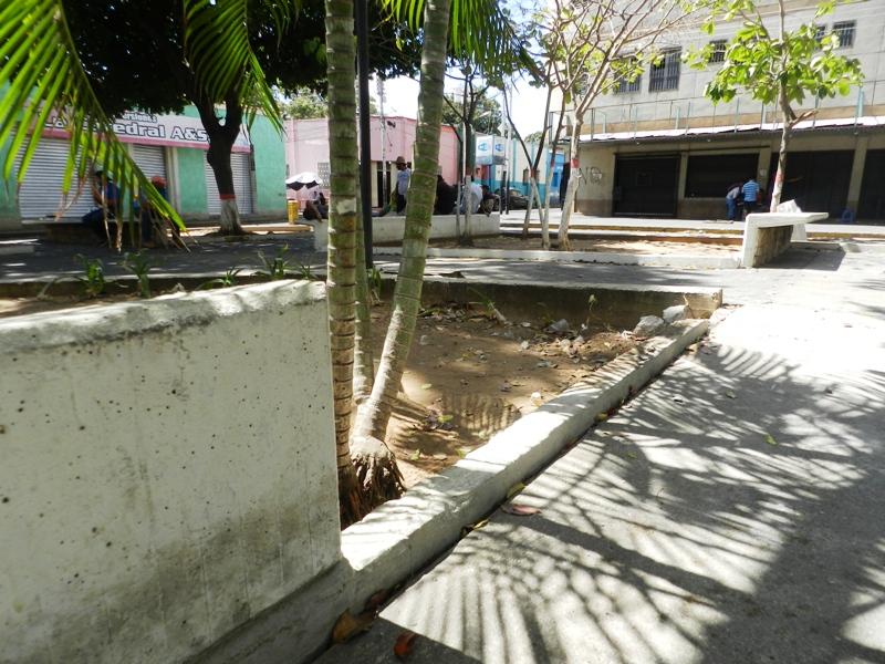 Daños en materos y estructuras de la plaza Bolívar (3)