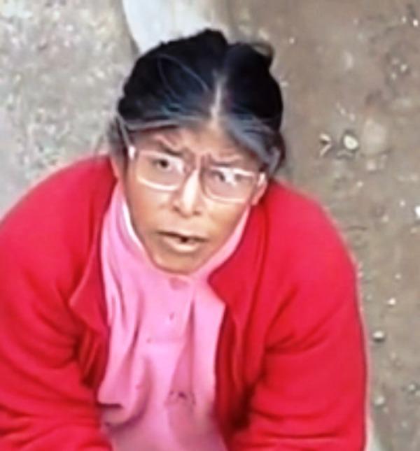 Señora evita que un trabajador venezolano solvente una falla electrica en Perú. Foto Redes Sociales
