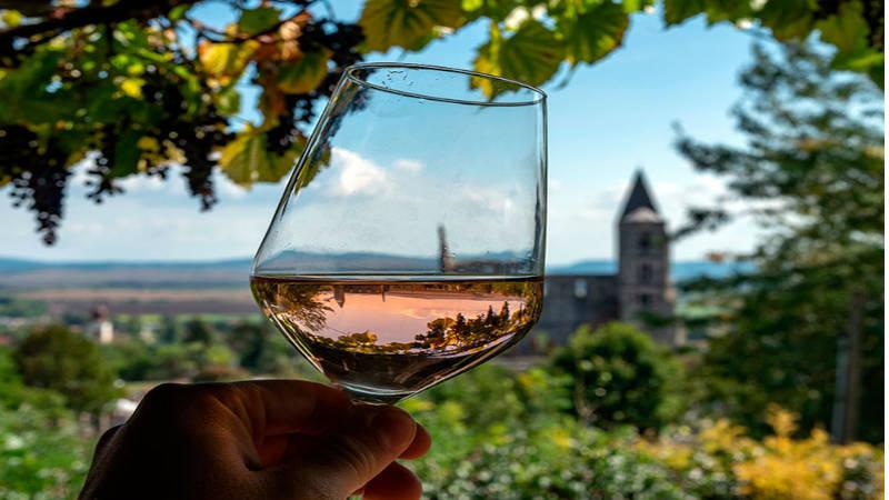 La región vinícola de Etyek para los amantes del vino