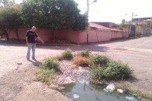 En la calle 7 el desborde aguas negras ha llegado hasta las casas