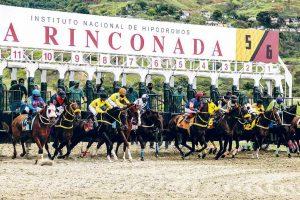 programación para finalizar el 2020 en el Hipodromo La Rinconada